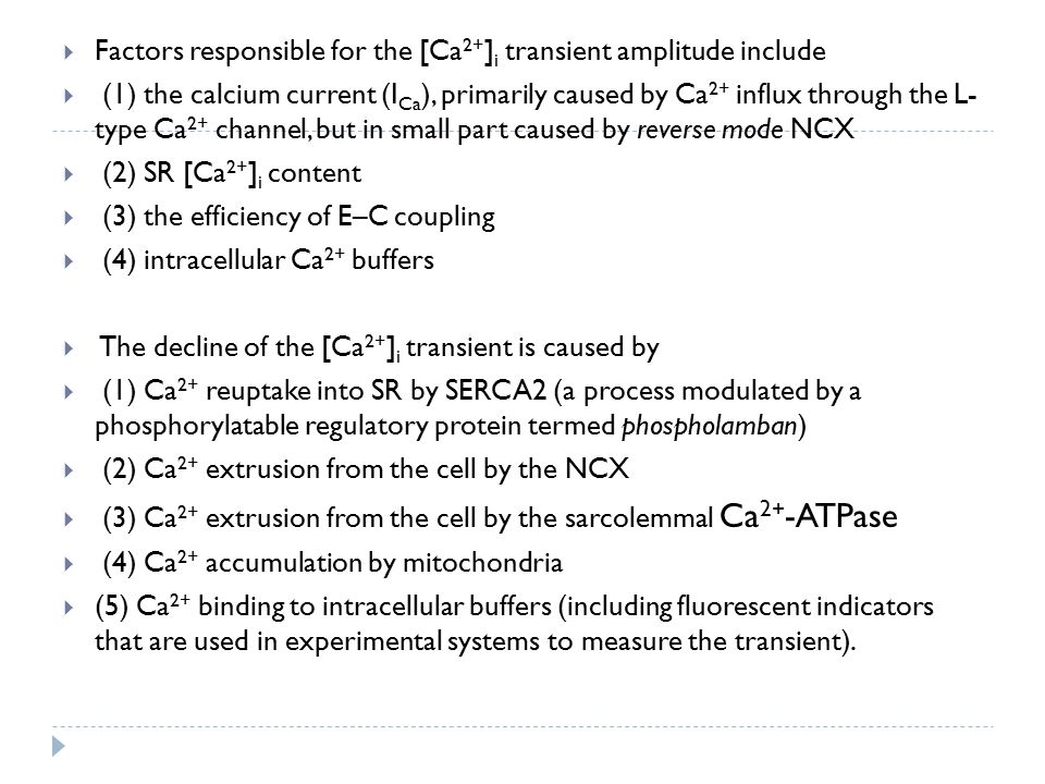 Factors responsible for the [Ca2+]i transient amplitude include